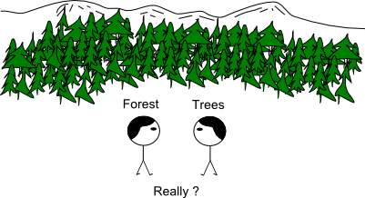 ExportForest_Trees.png